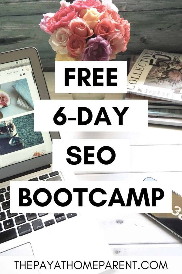 Free SEO Boot Camp Pin 3