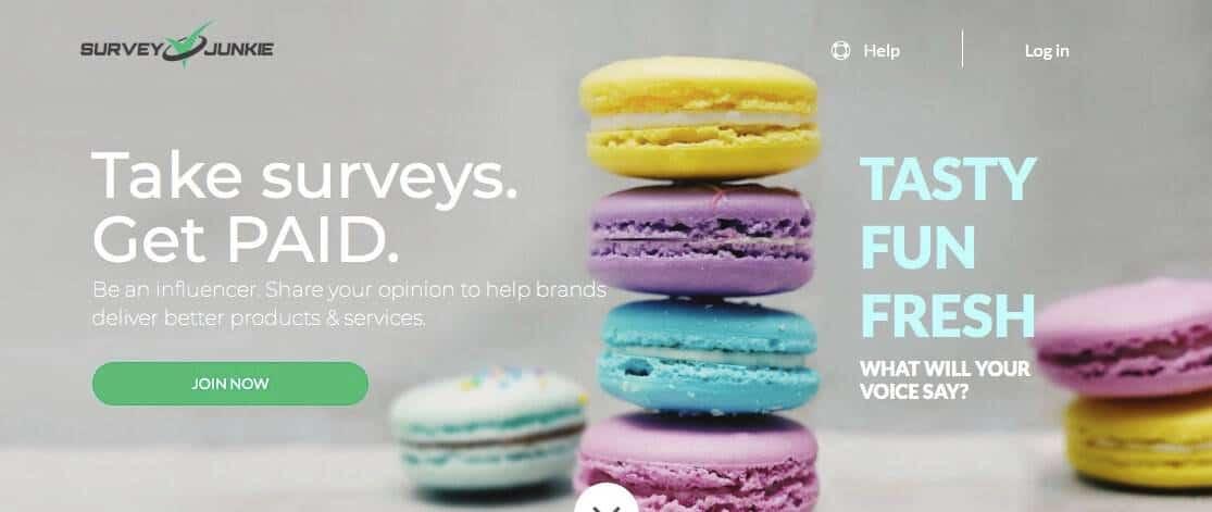 Survey Junkie home page